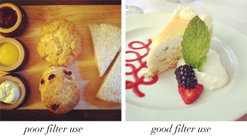 food filters
